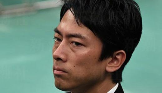 小泉進次郎は育児休暇取得できない?環境省大臣で入閣の影響や意味は?