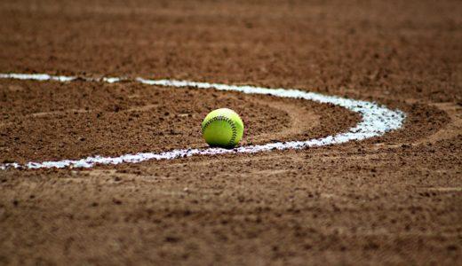 選抜高校野球2020|コロナ対策の無観客試合検討も『中止しろ』の声